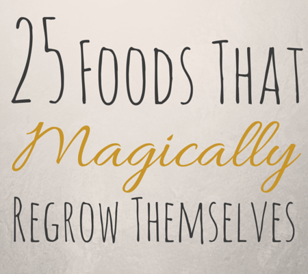 25 Foods That Magically Regrow Themselves